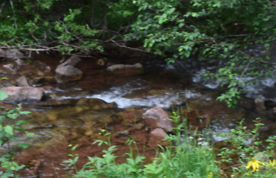 20 Acre Scotch Creek Placer Gold Claim, Colorado Rockies, Rico Mining District