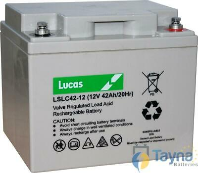 FNC12420 Sealed Lead Acid VRLA Batterie 12V 42Ah SLC42-12