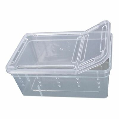 Insect Reptile Amphibian Breeding Box Feeding Transparent Plastic Clear Cases