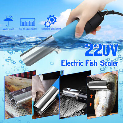 Electric Seafood Remover Descaler Fish Scale Clean Scaler Scraper Kitchen Tool