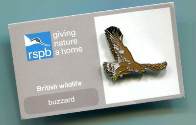 RSPB Charity Pin Badge - BUZZARD  Mint on  card (B5/2)