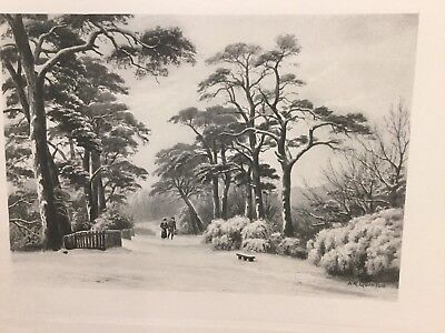 AR QUINTON ORIGINAL LITHOGRAPH Hampstead Heath The Firs Heath End 1912 London