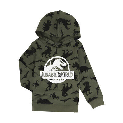 Jurassic World Boys Licensed Hoodie top various sizes free postage Brand New!