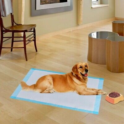 "200 Pieces 24"" x 24"" Pet Wee Pee Piddle Pad"