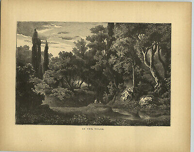 1883 Wood Engraving The Wilds Boys Woods