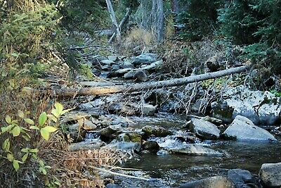 Wyoming Gold Mining Claim Prime Rock Hounding Mullen Creek Mine 20 acres