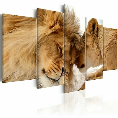 Non-woven Canvas Print Lions Framed Wall Art Picure Photo Image g-B-0034-b-m
