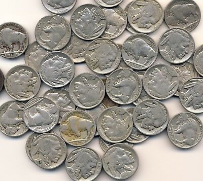 Roll (40 Coins) Of Full Date Buffalo Nickels Nice Mix Of Dates No Acid Coins