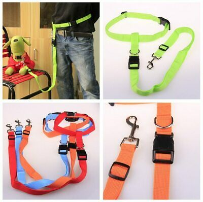 Pet Traction Lines Nylon Dog Leashes Long Walking Pet Dog Leashes Traction Rope