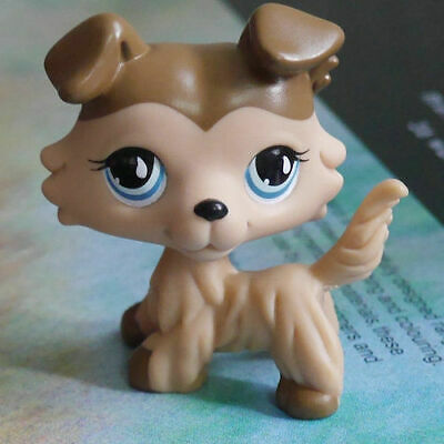 Hot LPS COLLECTION Action Figure Brown Collie dog 2 inch LITTLEST PET SHOP #893