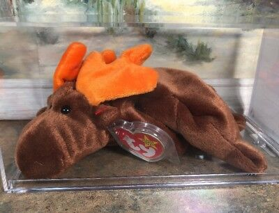 Ty Beanie Babies Chocolate Retired Rare MWMT Museum Quality Authenticated