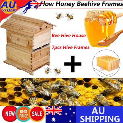 Wooden Beekeeping Beehive Brood House Box +7pcs Auto Flow Honey Hive Frames TOP1