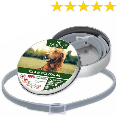 New Dewel seresto Flea Tick Collar for Dogs 63 cm 8 Month over 18 lbs 8 Month