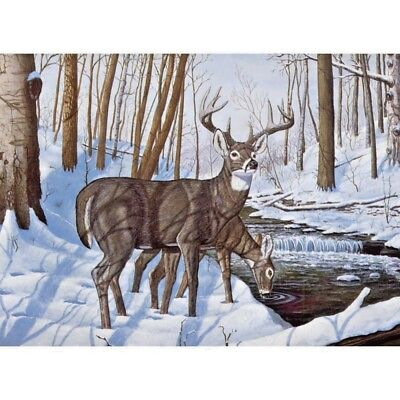 """WINTER BLISS Paint By Number Kit 15.75"""" x 11.25"""" Deer"""