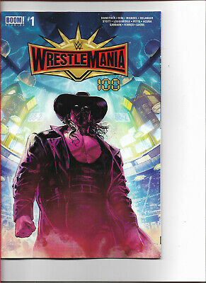 UNDERTAKER WWE ACE Comic Con Uniondale BY 11X14 Color Poster