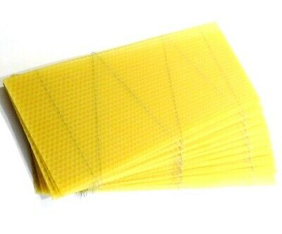 National Beehive Wired Wax Foundation Sheets