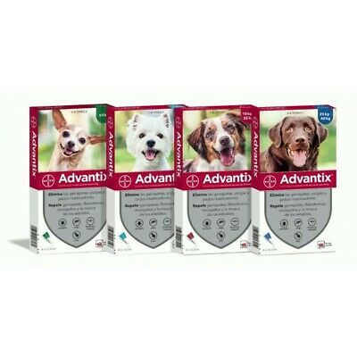 Advantix Bayer Per Cani 4 Fialette Antipulci Antizecche Zanzare