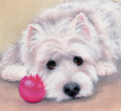 "LIMITED EDITION PRINT WESTIE/""Watching You!/""  ORIGINAL PAINTING BY SUE BARRATT"