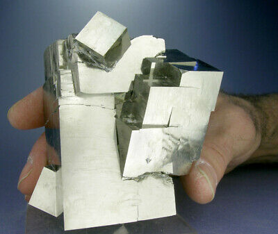 HUGE SHINY 5-CUBE GOLDEN PYRITE CRYSTALS w a 3 INCH CUBE, 3-D VIDEO, SPAIN