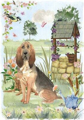 """Bloodhound Dog (4""""x 6"""") Blank Card/Notelet """"Wishing Well"""" by Starprint"""