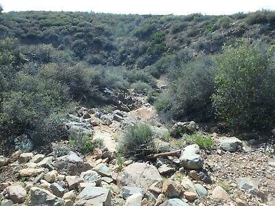 Gold Pick #1 - 20 Acre Lode Claim N of Phx in the Bradshaws Reduced Price