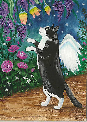 PRINT OF ACEO PAINTING RYTA ANGEL FAIRY TUXEDO CAT RAINBOW HUMMINGBIRD BUTTERFLY