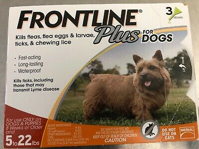 FRONTLINE Plus for small dog Flea and Tick Control for 5-22lbs Dogs  3 Doses