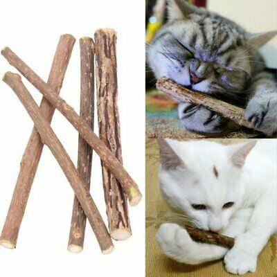Pet Cat Cleaning Teeth Toys Cat Grass Molar Toothpaste Stick Pure Natural KS