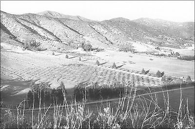 Poster, Many Sizes; Panoramic View Of Eagle Rock Valley, Los Angeles, Ca.1908 (6