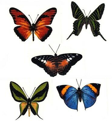 "5 Butterfly Vibrant Butterflies 1-1/4"" Waterslide Ceramic Decals Bx"