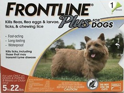 FRONTLINE Plus Small dogs Flea and Tick Control for 5-22lbs Dogs 1 Dose NO BOX