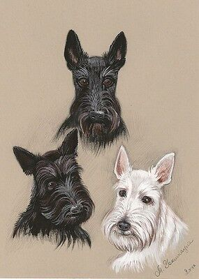 1.5x2 DOLLHOUSE MINIATURE PRINT OF PAINTING RYTA 1:12 SCALE SCOTTISH TERRIER DOG