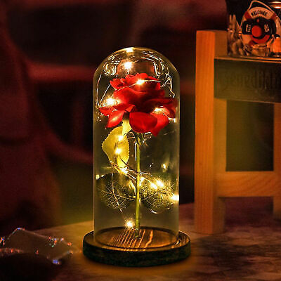 WR Beauty and The Beast Rose Glass Dome LED Lighted Mother's Day Gift For Her US