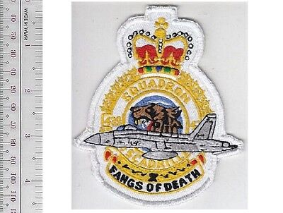 Nato Tiger Meet Canada Royal Canadian Air Force RCAF 439th Fighter Squadron 1st