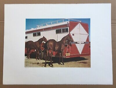 Richard Mclean Signed Original Lithograph Horse Fillys With Trailer Ltd. Realism