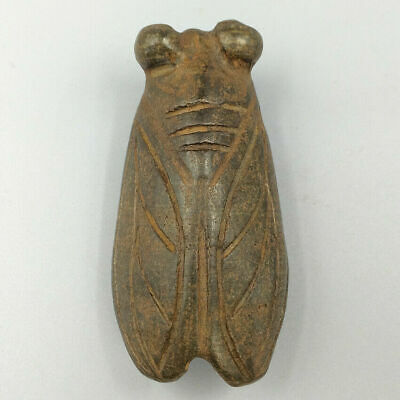 Hand Carved Cicada Pendant Magnetic Field Meteorite Pallasite Ancient Sculpture