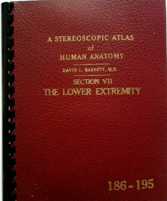 """VIEW MASTER """"ATLAS of HUMAN ANATOMY"""" SCHEIBE 186 - 195 Section VII  LOW EXTRMITY"""