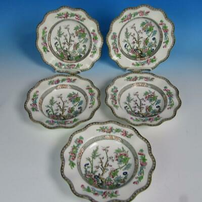 Coalport China Indian Tree - 5 Soup Bowls - 8¾ inches