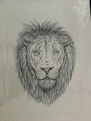 Original Lion Drawing in Pen and Pencil Wallart Picture