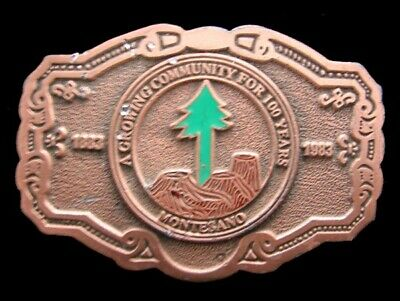 Jk12167 Vintage 1983 **Montesano, Wa** A Growing Community For 100 Years Buckle