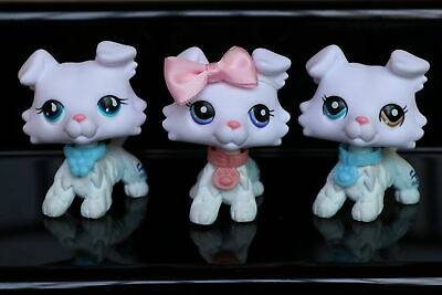 Littlest Pet Shop LPS New Collie White Different Eyes With Accessories 3pcs