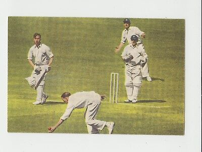 Cricket : Denis Compton : 1950s Dutch sports card