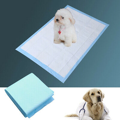 Super Absorbent Antibacterial Wee Wee Pads Pet Training Pads for Cats Puppy Dogs