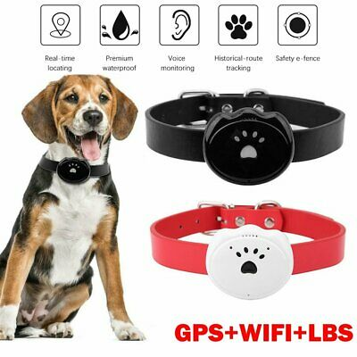 Dog GPS Tracker And Pet Finder The GPS Dog Collar Anti Lost Wifi APP Real Time