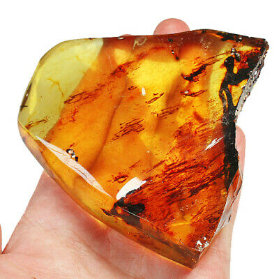 170.3g Baltic Butterscotch Amber Specimen Collectible Natural 琥珀 蜜蜡 Fmc787 Fine Rings Jewelry & Watches