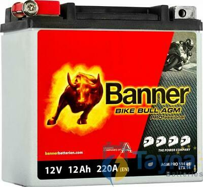 YTX14-BS Compatible Banner Bike Bull AGM PROfessional Batterie (51401)