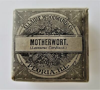 antique Unused MOTHERWORT QUACK MEDICINE Allaire Woodward HYSTERIA NERVINE