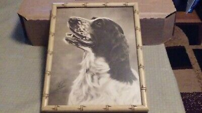 Vintage Framed Dog Print - English Springer Spaniel