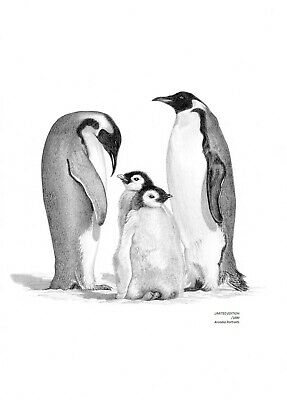 PENGUIN Family Limited Edition art drawing print signed by UK artist