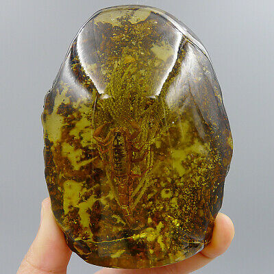 Raw Stone Scorpion Plants Insects Natural Amber Jade Fossil Decorative Crafts